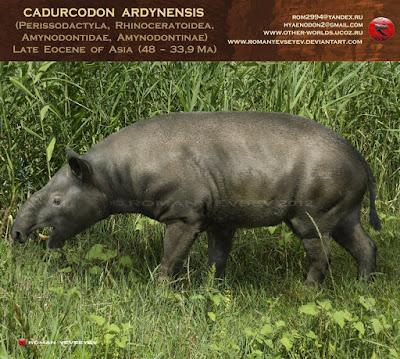 Cadurcodon