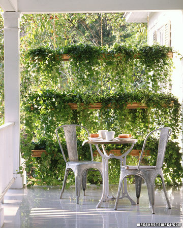 Best pvc pipe ideas for outdoor living and gardening for Privacy planter ideas