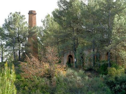 """Vista de les instal·lacions i de la xemeneia de la mina de plom """"La Martorellense"""", actualment cobertes per la vegetació"""