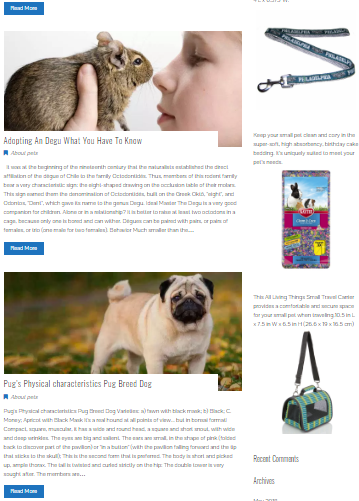 How To Treat My Pet