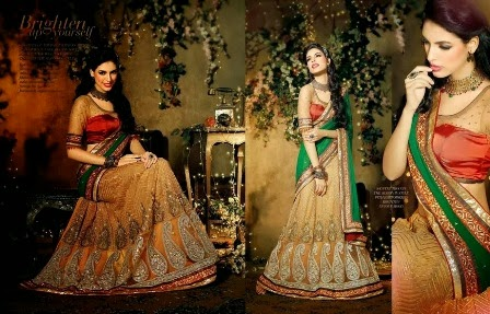 Sarees Collection for Diwali festival