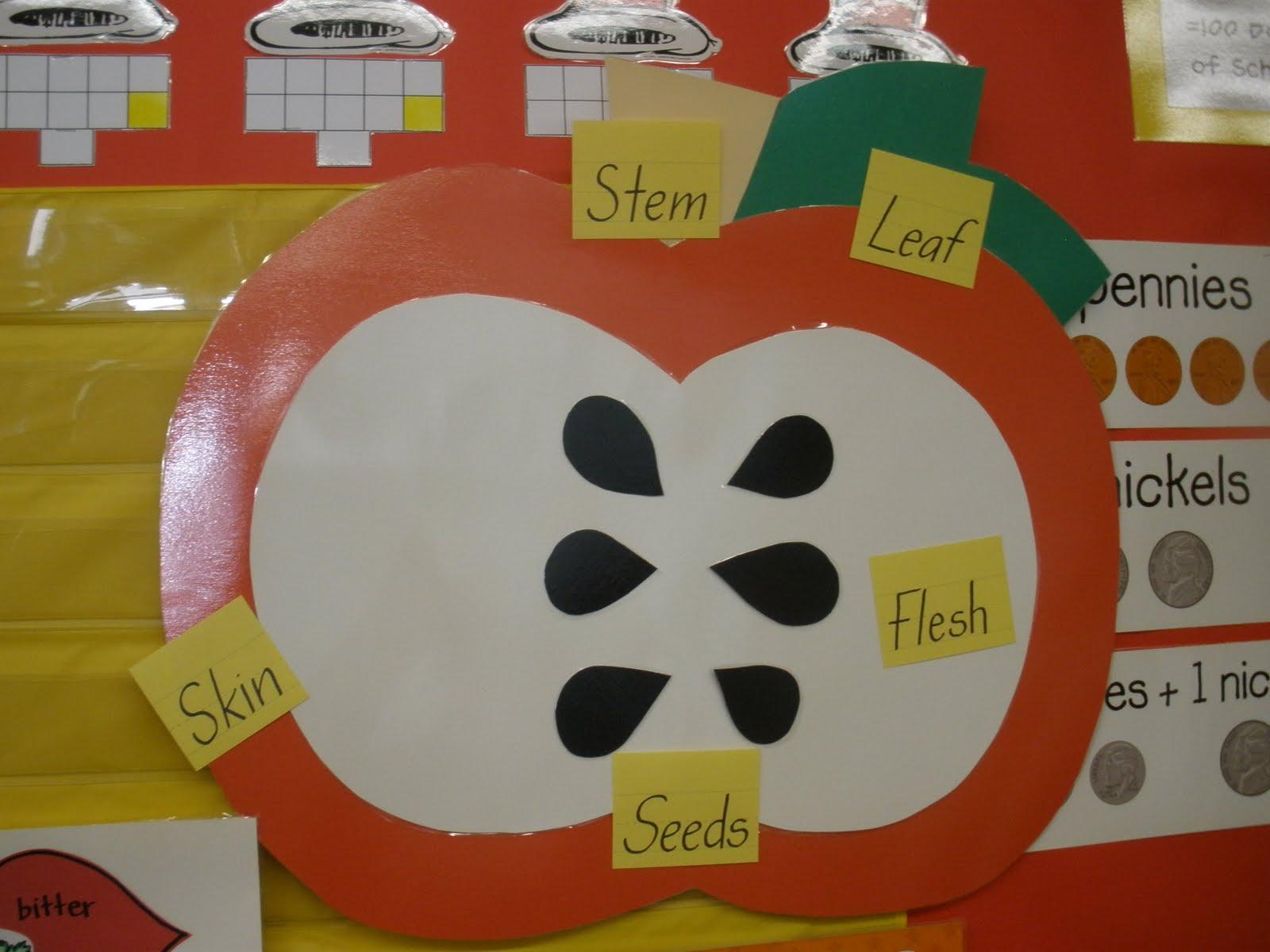 The Art Of Teaching  A Kindergarten Blog  Parts Of An Apple