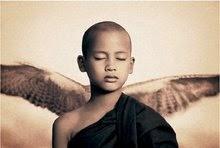 Llegaron ángeles de todo plumaje