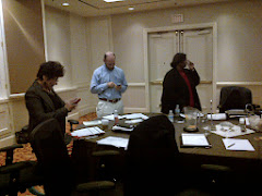 AAAA Board Meeting Jan 2013