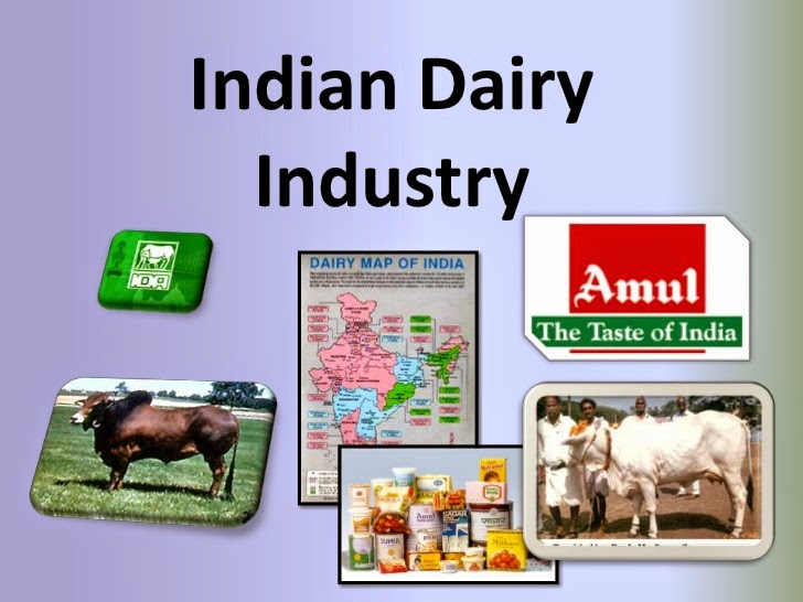 INDIAN DAIRY INDUSTRY RELATED