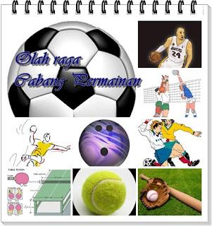 http://blog-nya-newbie.blogspot.com/2013/09/mengenal-cabang-olahraga-permainan.html