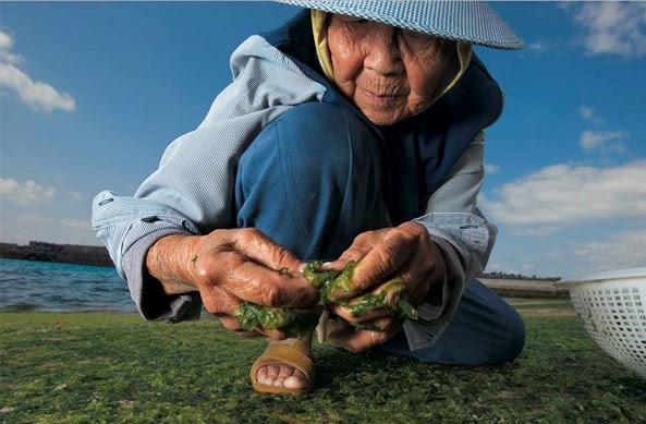 Dónde podemos coger el agua de mar. ¿Hay peligro de contaminación? Okinawa
