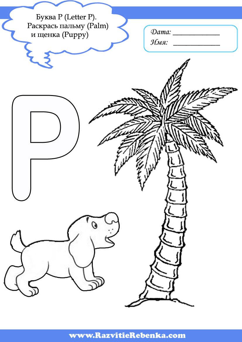 английские глаголы на букву p
