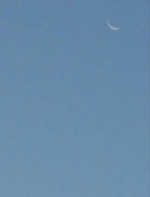 The moon and Venus (bottom left) 7-Dec-2015