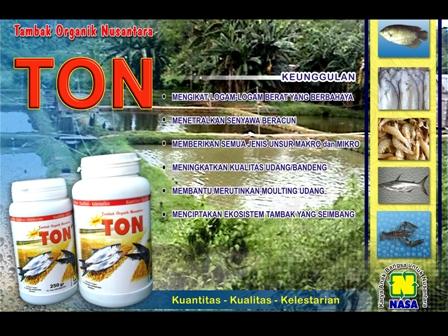 http://www.organiknusantara.com/2012/11/cara-praktis-perikanan-organik-air-payau.html