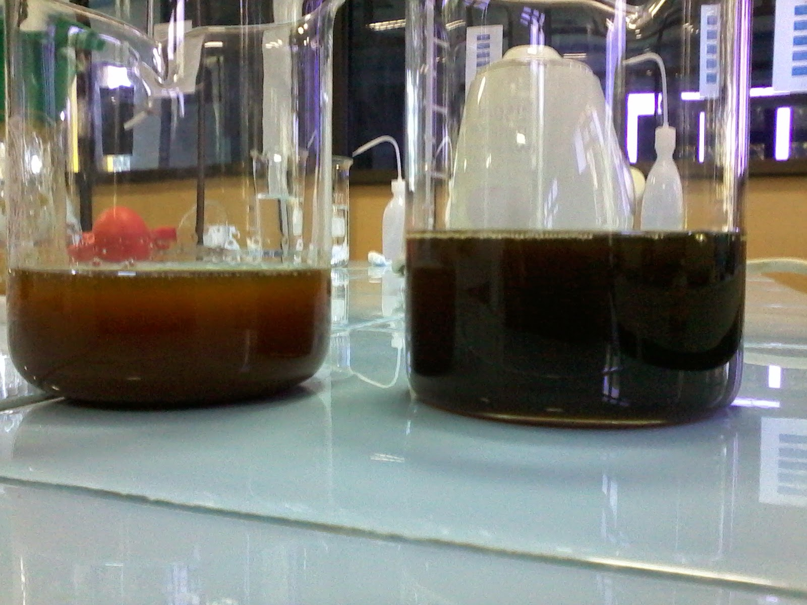 Animasi Kimia Identifikasi Kation