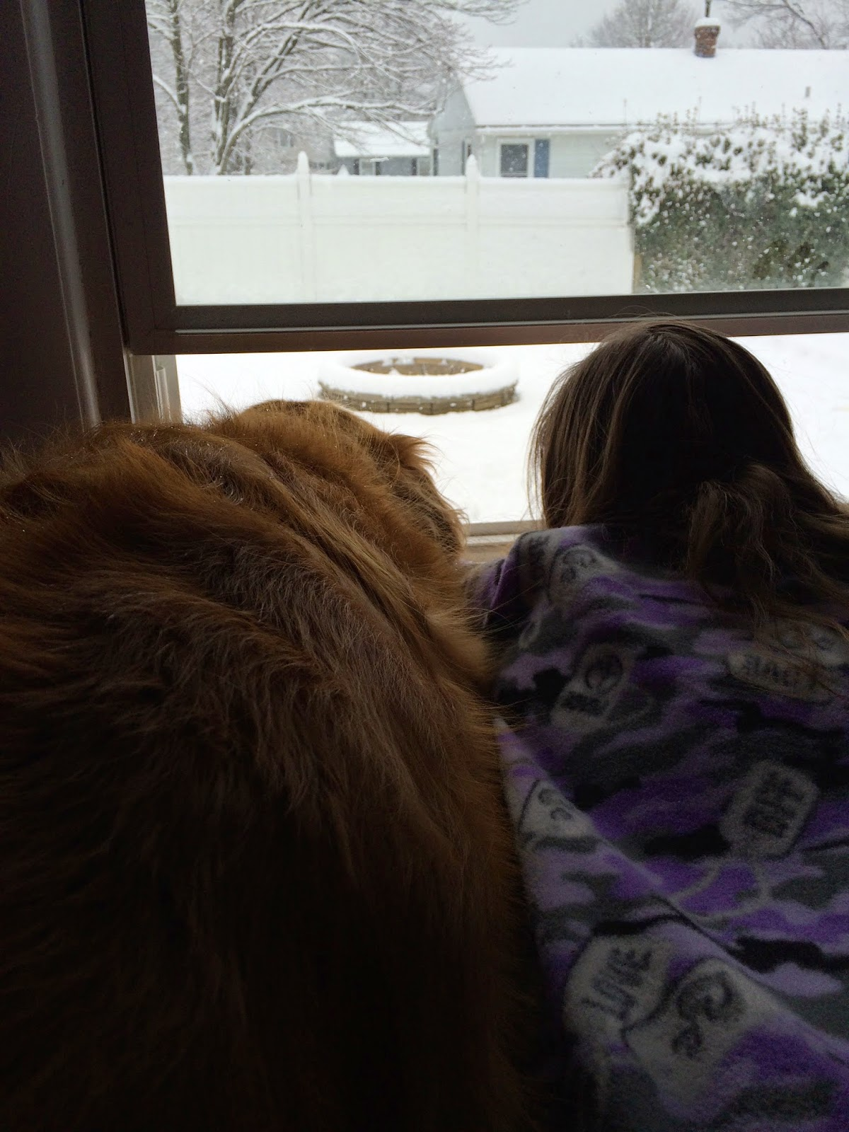 dog and girl watching snowflakes fall