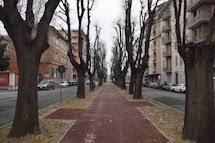 Riqualificazione di Corso XX Settembre, a quando la ripresa dei lavori?