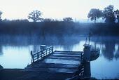 Treesbank Ferry