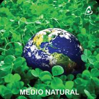 Medio Natural - Estudios de Fauna - Estudios de Flora Vegetación
