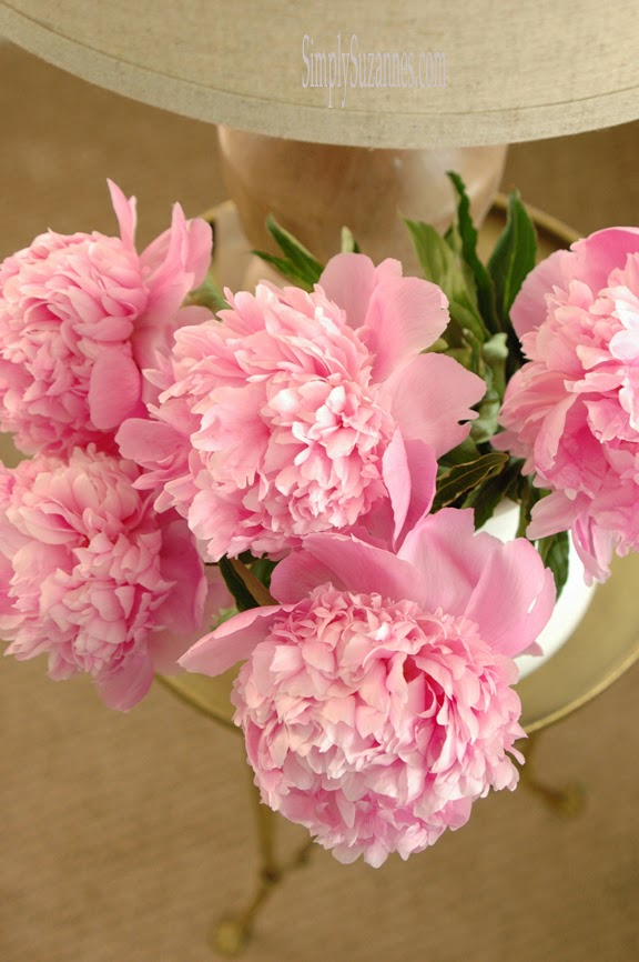 simply suzanne's at home: pink peonies . . .