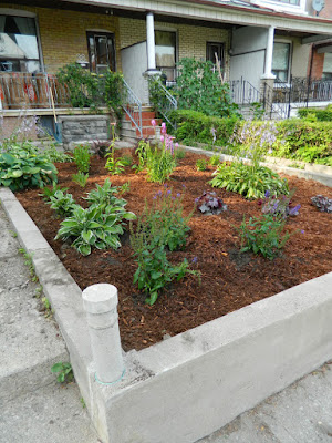 Bloordale garden clean up Paul Jung Gardening Services Toronto after