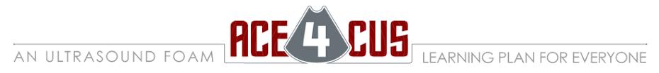 ACE4CUS