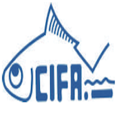 CIFA Recruitment 2015