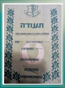 Israel Defense Forces Krav Maga Instructor Certificate