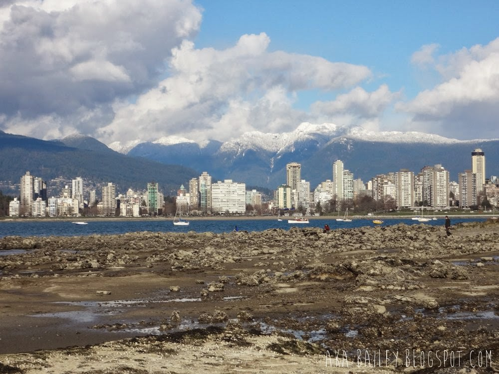 View of Downtown Vancouver from Kitsilano Beach
