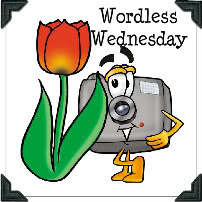 Wordlless Wednesday