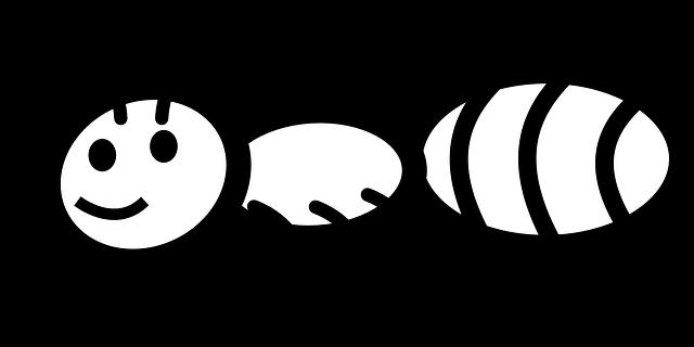 Hayvanlar Tarafından Yapılmış Esrarengiz 5 Yapı