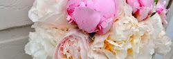 Rosapion-Din blomsterbutik på nätet