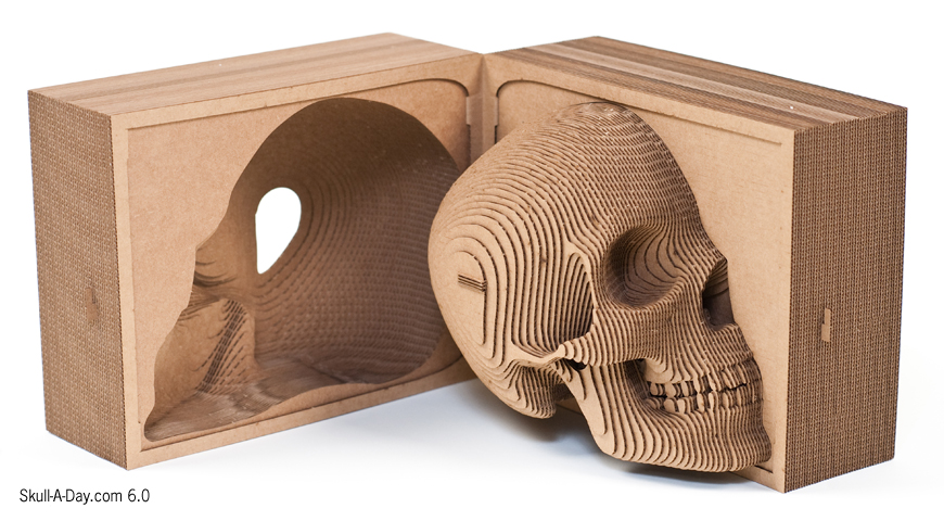 Contest Win A Cardboard Safari Vince Skull