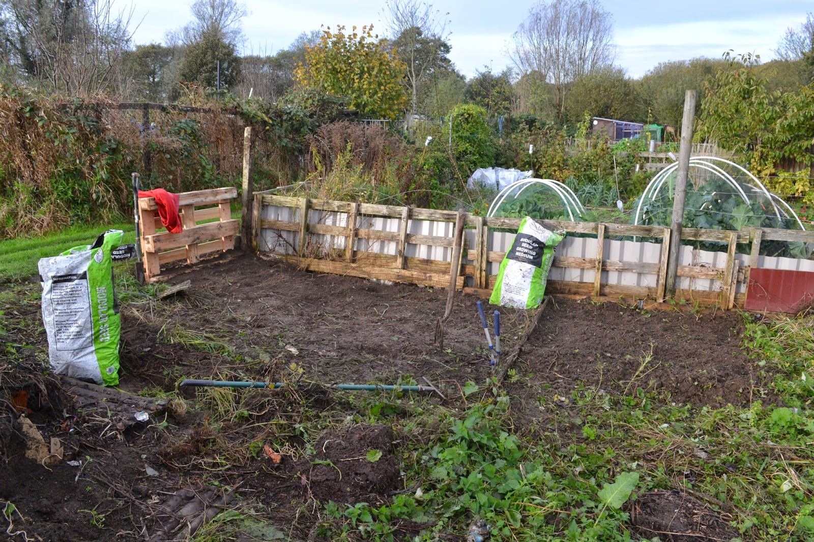 Norwich Allotment