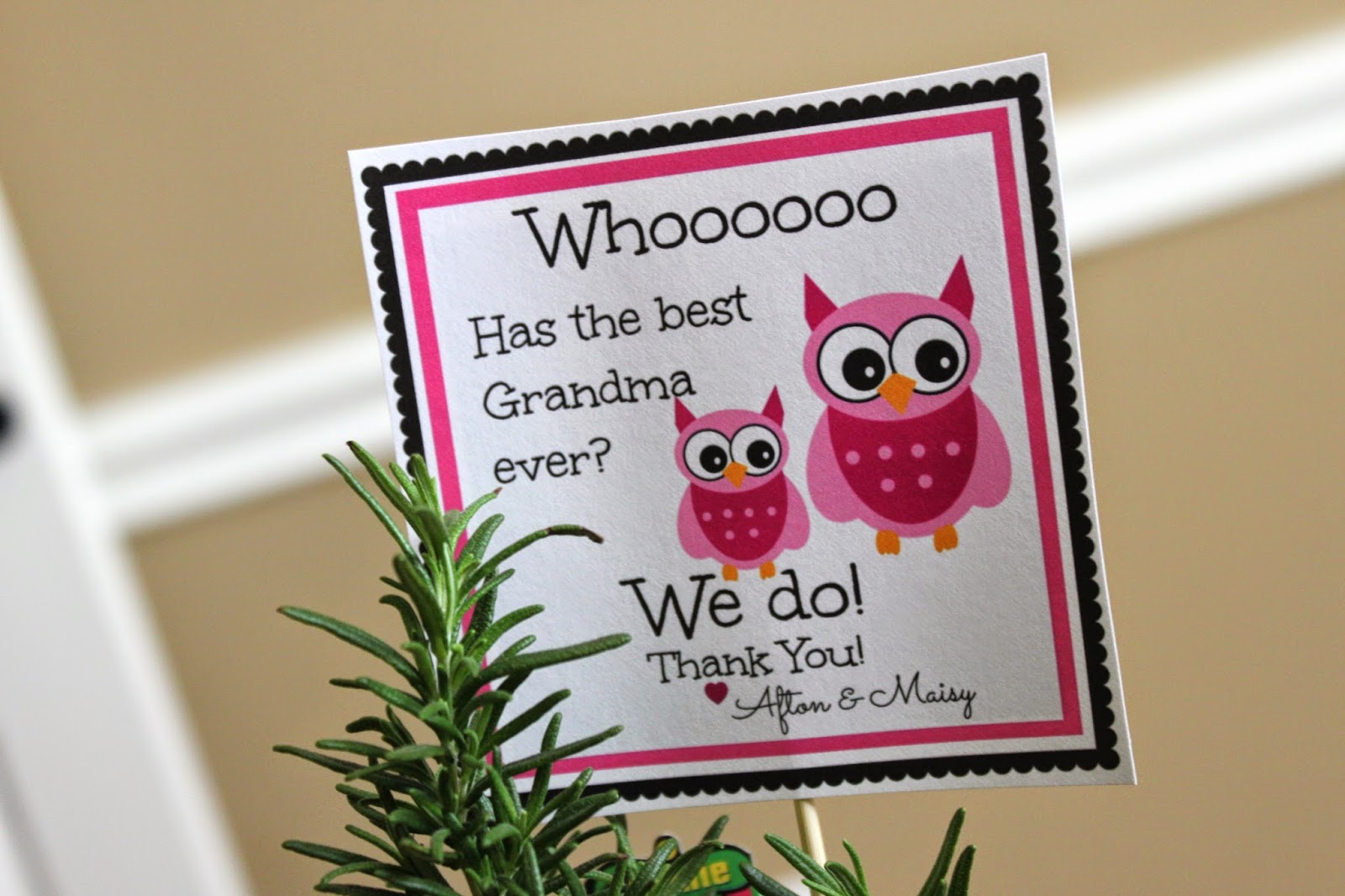 Crafty Texas Girls: DIY Gift Idea with an Owl Printable
