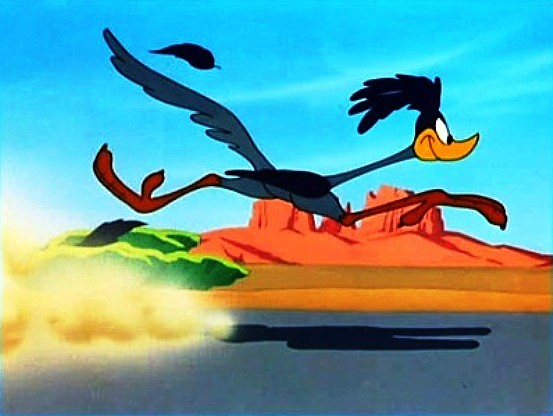 The Road Runner 4