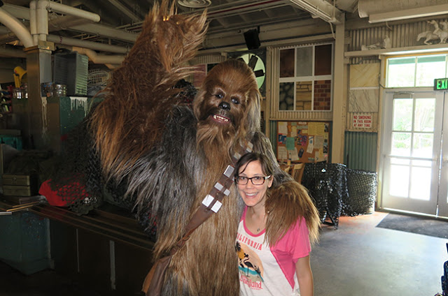 Chewbacca at Rebel Hangar