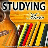 http://www.amazon.com/Studying-Music-Relaxing-Meditation-Classical/dp/B007X78ZU0/ref=sr_1_2?s=dmusic&ie=UTF8&qid=1405278879&sr=1-2&keywords=studying+music