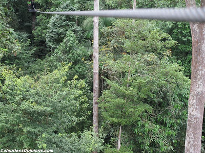 Skytrex Shah Alam Malaysia Extreme Challenge flying fox cable