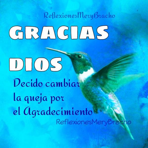 Reflexión de Dar gracias a Dios, no quejarnos, ser agradecidos con lo que tenemos, estudio de la Biblia por Mery Bracho
