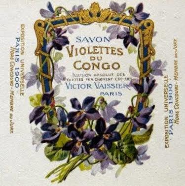Violettes du Congo