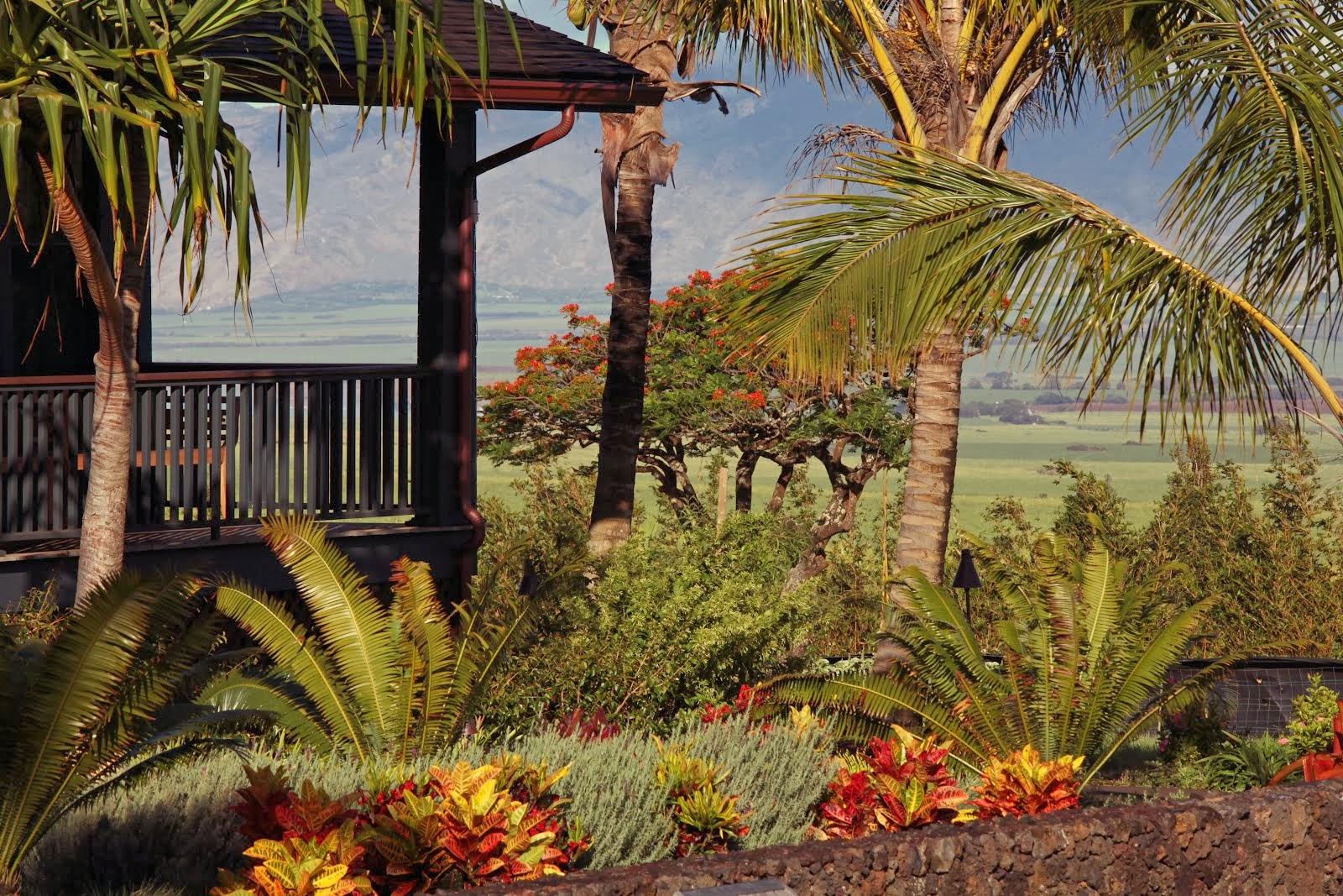 Mountain View at Lumeria Maui