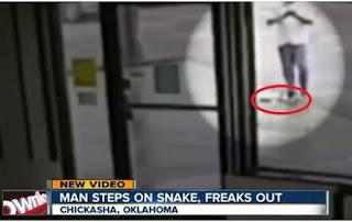 Asyik Dengan Smartphonenya, Pria Ini Digigit Ular 1,5 Meter