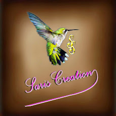 Logo Saris Creation's