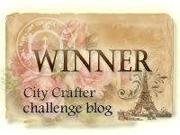 City Crafter Winner #309