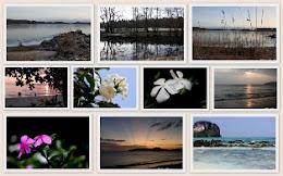 Ta en titt på denne fotobloggen-Skipperfruas fotoblogg.