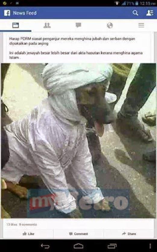 MELAMPAU !! Penghinaan Terhadap Islam.Anjing Di Pakaikan Serban.
