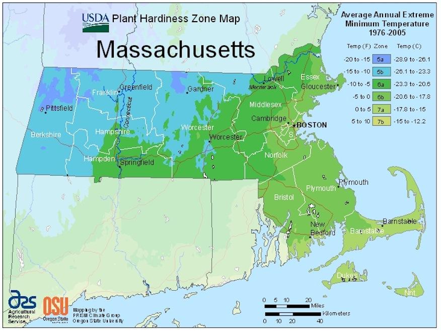Ipswich Garden Club: USDA Plant Hardiness Map for Machusetts on garden designs zone 7, garden designs zone 6, garden designs zone 3,