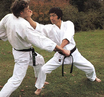 how to become a karate master at home
