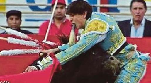 Matador merana mulut ditusuk tanduk lembu