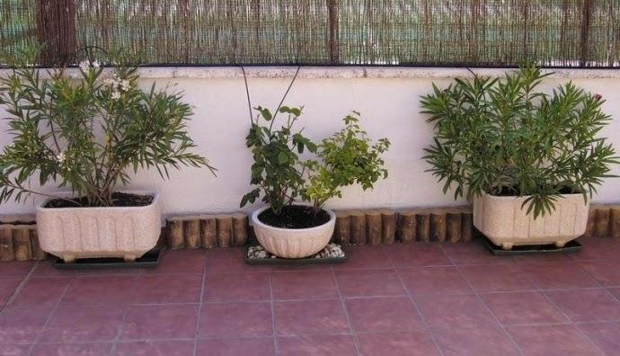El aprendiz de jardinero macetas algo de historia - Jardineras prefabricadas ...