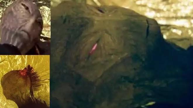 Εξωγήινος σκοτώνεται απο κάποιον  Dr Jonathan Reed σε ενα δάσος (video ντοκουμέντο!)