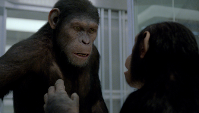 the rise of the planet of apes