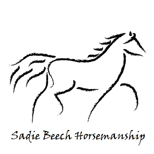 Sadie Beech Horsemanship